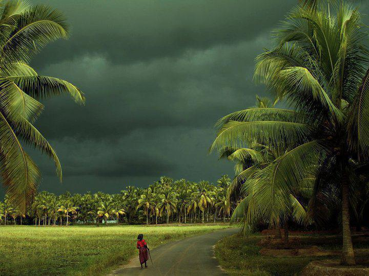 Kerala, rains, majestic views, sleepy life