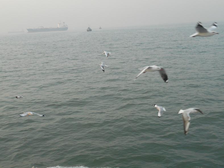 Feet on the map, Murud, Mumbai