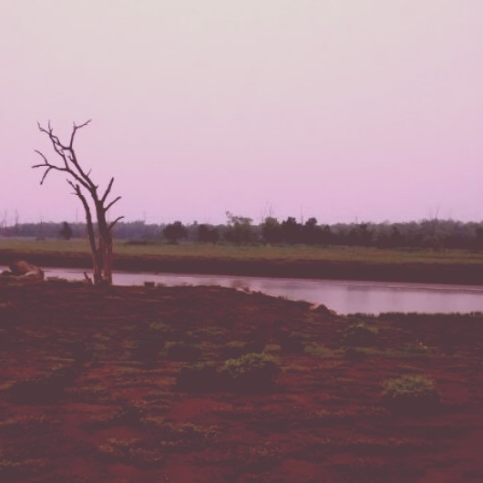 Pench- Enjoy the eerie silence of the jungles, Feet on the map